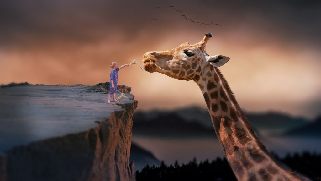 linguaggio giraffa comunicazione non violenta
